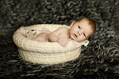 Newborn baby sleeping on fur in the basket Royalty Free Stock Photography