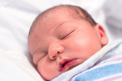 Newborn baby sleeping in hospital Royalty Free Stock Photography