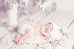 Newborn baby sleeping on leaves Stock Photo