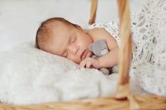 Newborn in basket Stock Photos