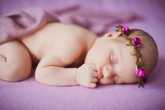 Newborn baby sleeping on a pink background. Royalty Free Stock Photography
