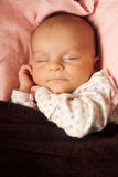 Newborn baby sleeping portrait. On a pillow Stock Images