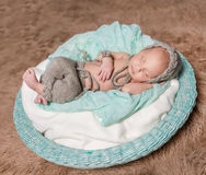 Newborn baby sleeping in round basket Royalty Free Stock Photography