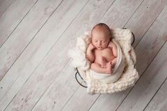 Newborn Baby Sleeping in a Wire Basket. A portrait of a seven day old, newborn baby sleeping in a wire basket on a whitewashed, wooden floor
