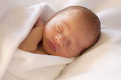 Newborn baby sleeping wrapped in white blanket Stock Photography