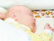 Newborn baby sleeps Royalty Free Stock Photos