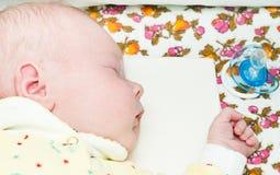 Newborn baby sleeps Royalty Free Stock Photo