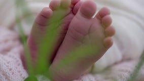 Newborn baby sleeps close up stock footage