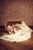 A newborn baby sleeps in a cozy room in a basket, covered with a Stock Photography