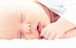 Newborn baby sleeps Stock Images