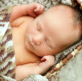 A newborn baby sleeps in a drawer wrapped in a knitted brown sca Stock Photography