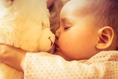 Newborn baby sleeps with a teddy bear Royalty Free Stock Image