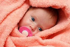 Newborn baby with soother Stock Image