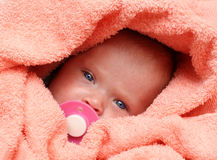 Newborn baby with soother. In peachey blanket stock image