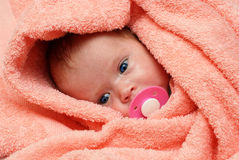 Newborn baby with soother. In peachey blanket stock photo