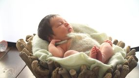 Newborn Baby in Studio. 4k stock video footage