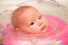 Newborn baby swimming in bath Royalty Free Stock Photography
