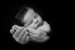 Newborn Baby taken closeup in father`s Hand - black and white.  royalty free stock photo