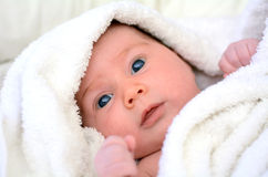 Newborn baby with towel royalty free stock images