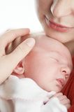 Newborn baby under adult hand protection Stock Photography