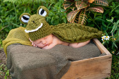 Newborn Baby Wearing an Alligator Costume Stock Photography