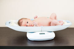 Newborn baby on weighing scale. Newborn baby boy on weighing scale Royalty Free Stock Photo