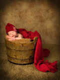 Newborn baby in wooden bucket Royalty Free Stock Images