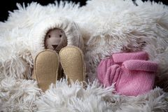 Newborn baby wool clothes shoes toy bear. Studio royalty free stock images