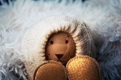 Newborn baby wool clothes shoes toy bear. Studio royalty free stock photography
