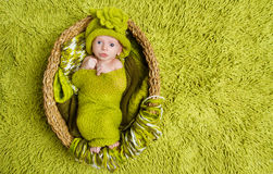 Newborn baby in woolen green hat inside basket. Newborn baby in woolen hat inside basket over green background Royalty Free Stock Photo