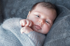 Newborn baby wrapped in knitted warm blanket. Beautiful closeup royalty free stock photo