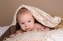 Newborn baby wrapped in  light brown soft fluffy cloth. On beige background Royalty Free Stock Photos