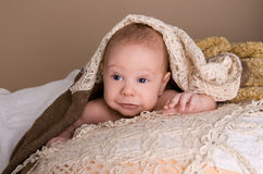 Newborn baby wrapped in  light brown soft fluffy cloth. On beige background Royalty Free Stock Photography