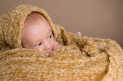 Newborn baby wrapped in  light brown soft fluffy cloth Stock Photo