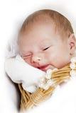Newborn in the basket Stock Photos