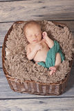 Newborn in a basket Stock Images