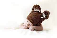 Newborn in bear hat Stock Image