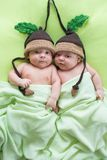 Newborn beautiful baby twins weared in funny knitted hats. Closeup portrait, caucasian child Royalty Free Stock Photos