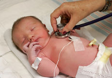 Newborn being checked Royalty Free Stock Photos