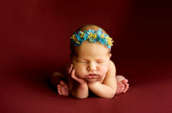 Newborn on the blankets folded handles stock image