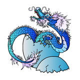 Newborn blue asian dragon on white. Newborn blue water asian east dragon on white background. Vector illustration Royalty Free Stock Photography