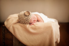 Newborn in a box Stock Photos