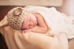 Newborn in a box royalty free stock photos