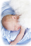 Newborn boy Royalty Free Stock Photography