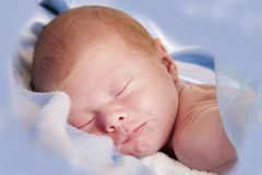 Newborn boy Royalty Free Stock Images