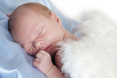 Newborn boy Royalty Free Stock Photography