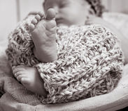 Newborn boy  asleep in the basket Stock Photography