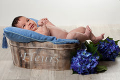 Newborn boy with blue flowers Stock Image