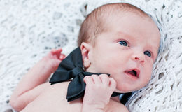 Newborn boy with butterfly cute gentleman. On white bedspread royalty free stock photography