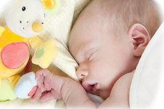 Newborn boy sleeping. Portrait of a newborn baby boy sleeping with toy Stock Photo